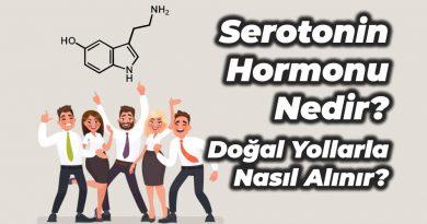 Serotonin hormonu