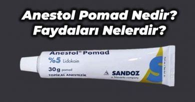 anestol pomad