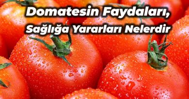 domatesin faydaları