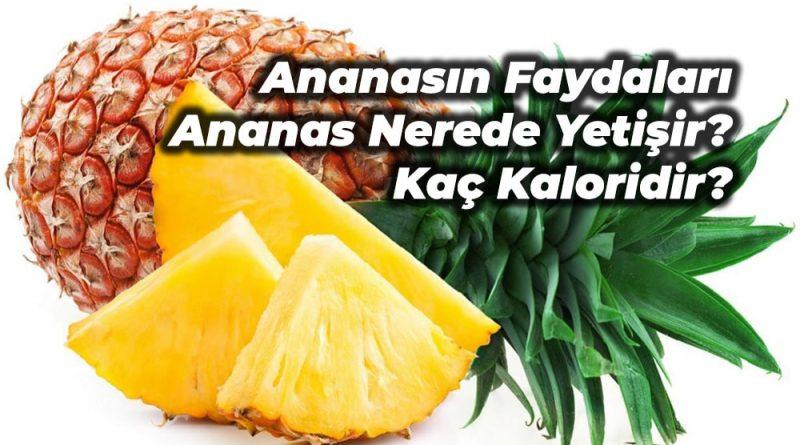 ananas faydaları