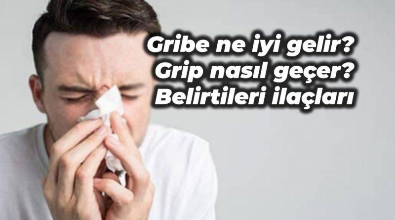 gribe ne iyi gelir