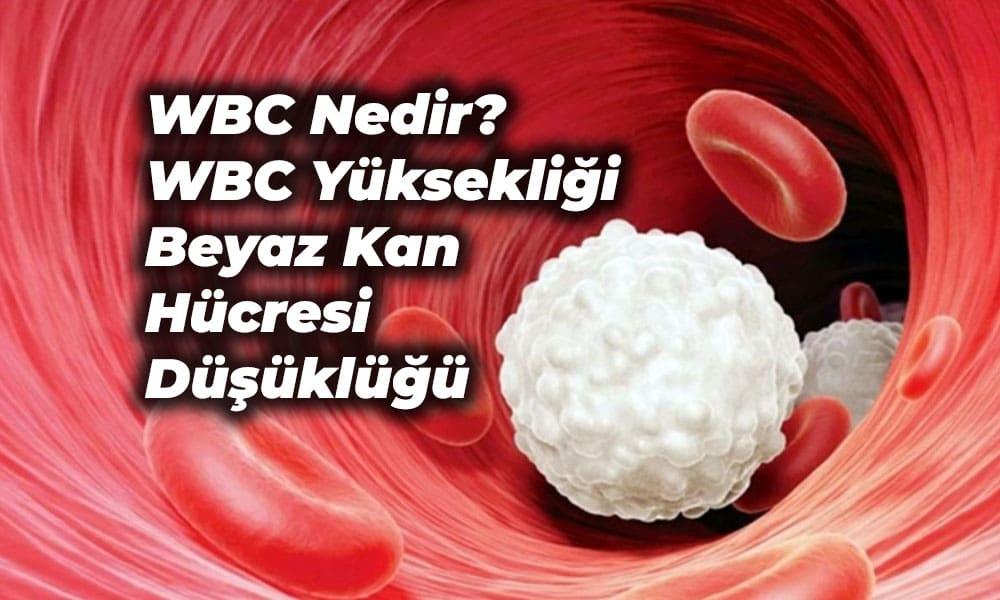 WBC nedir