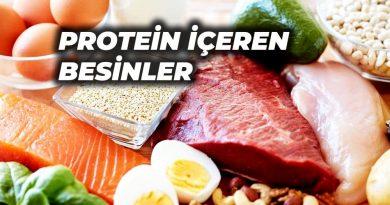 protein içren besinler
