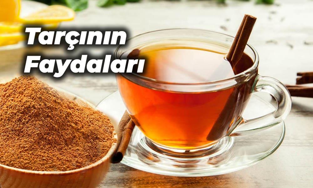 tarçın çayı faydaları