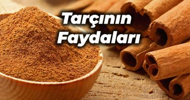 tarçın faydaları