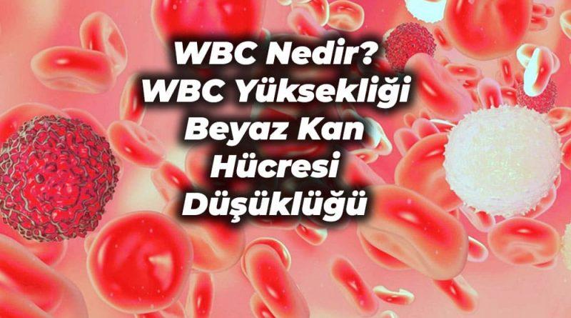 wbc yuksekligi